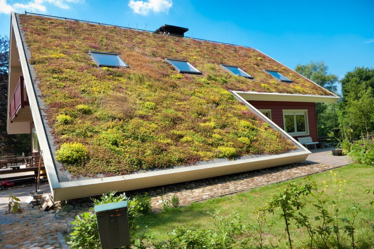 groen hellend dak